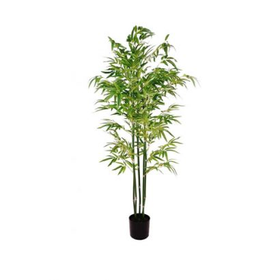 LEEZWORLD POTTED TREE (BAMBOO)